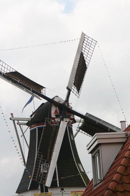 """Ook beeldbepalende koren- en pelmolen """"FORTUNA"""" is feestelijk aangekleed. De molenaars (aangevuld met leerling-molenaar André Bood) dragen hun steentje bij; onderin de molen kunnen bijvoorbeeld de startnummers worden opgehaald."""