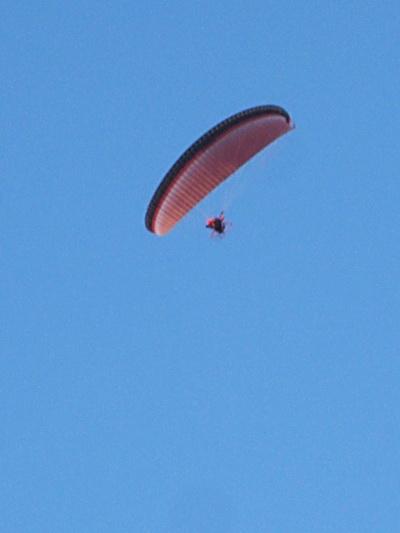 Ja, die 'bromvliegen' bedoel ik... Een groot vliegscherm, onderaan een mannetje met een motortje... Aan de ene kant heel avontuurlijk, het summum van individueel genot... Aan de andere kant: Luchtvervuiling.. Of moeten we er aan wennen dat er steeds minder natuurlijke vogels in de lucht zijn, en steeds vaker kunstmatige vliegvarianten?