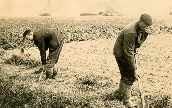 Boerenarbeiders verkl